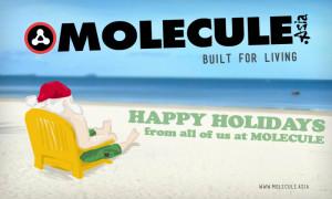 moleculemolecule-santa